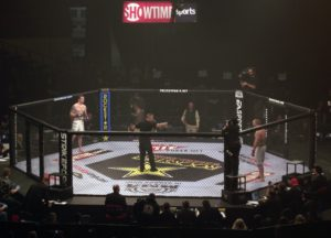 Strikeforce_cage_2011-01-07
